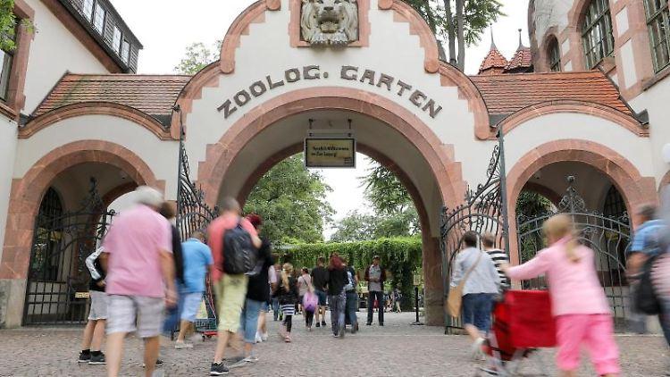 Besucher gehen in den Zoo Leipzig. Foto: Jan Woitas/Archivbild