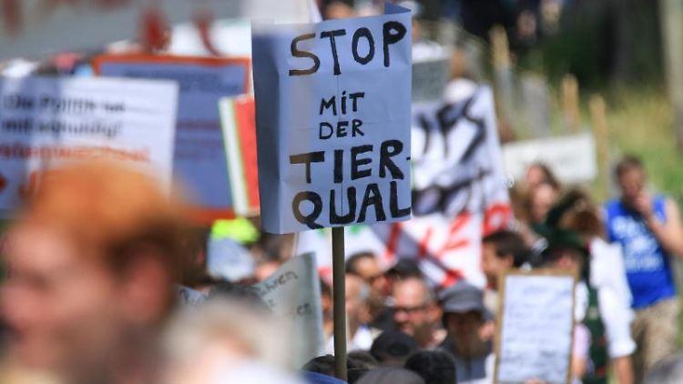 Gegen mutmaßliche Tierquälerei auf einem der größten Milchviehbetriebe in Bayern demonstrieren Tierschützer. Foto:Benjamin Liss