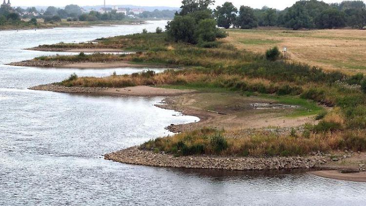 Der niedrige Wasserstand der Elbe lässt Sandbänke sichtbar werden. Foto: Peter Förster/Archivbild