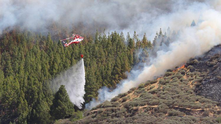 Gran Canaria: 1.000 Hektar Wald brennen - Feuer nicht unter Kontrolle