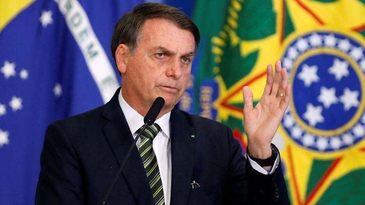 Regenwald - Bolsonaro erklärt deutsche Fördermittel für verzichtbar