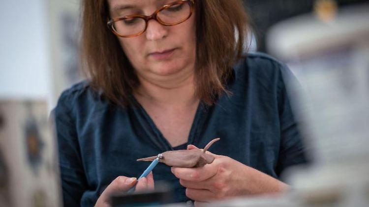 Hildegard Enting, Präparatorin im Senckenberg-Museum, erstellt ein Modell einer Blau-Schäfer-Schnecke. Foto: Frank Rumpenhorst/Archivbild
