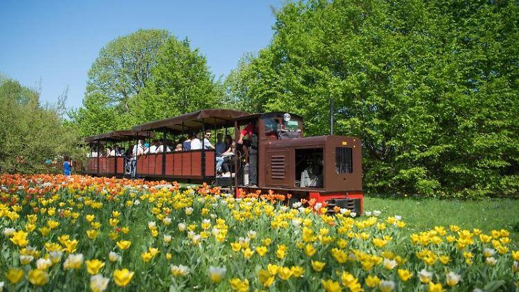Die Britzer Parkbahn fährt im Britzer Garten. Foto: Arne Immanuel Bänsch/Archivbild