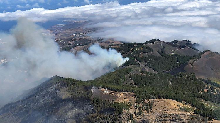 Menschen wegen Waldbrands auf Gran Canaria evakuiert