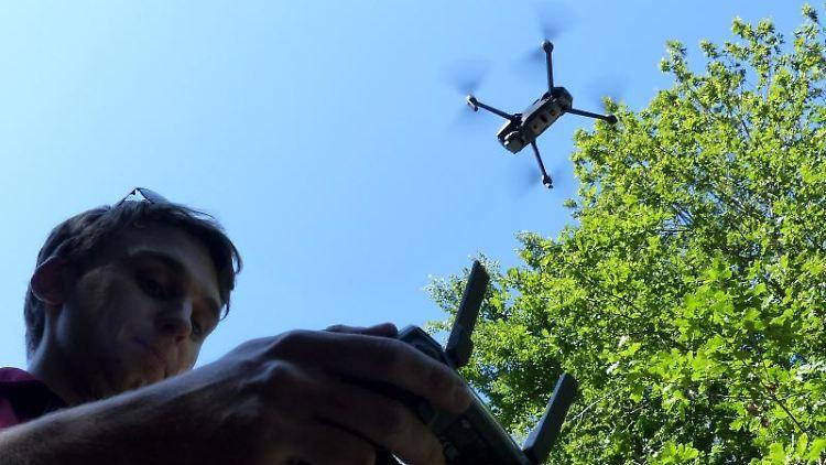Christian Frank, Leiter des Forstreviers Bitburg-West, lässt eine Drohne über ein Waldstück fliegen. Foto: Landesforsten Rheinland-Pfalz