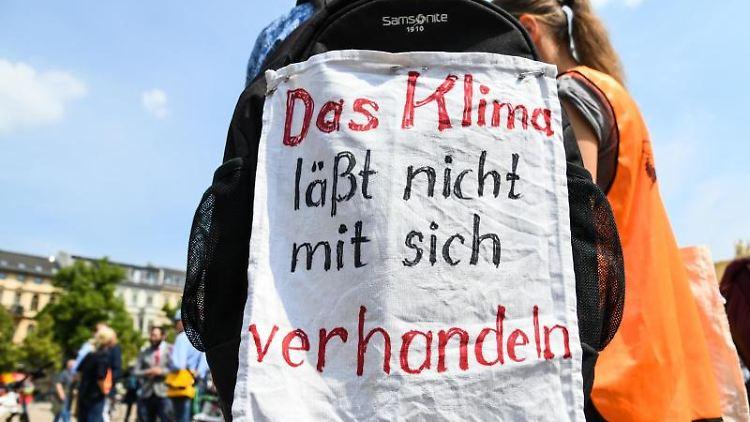Schülerinnen und Schüler demonstrieren mit Protestplakaten mit verschiedenen politischen Aufschriften. Foto: Julian Stähle/Archivbild