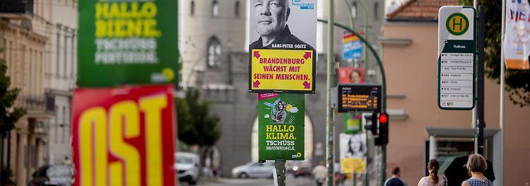 Thema: Landtagswahlen Brandenburg