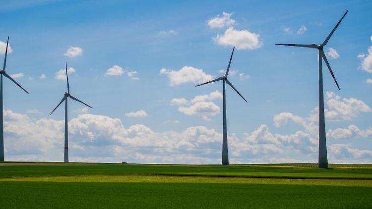 Vier Windkraftanlagen stehen auf einem Feld. Foto: Andreas Arnold/Archivbild