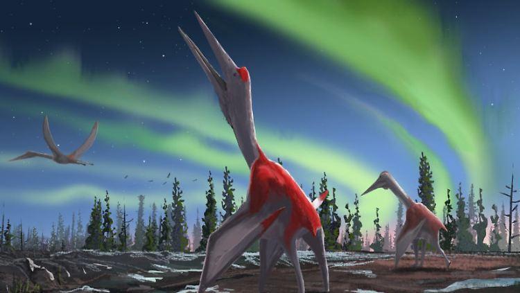 Pterosaur-Cryodrakon-boreas-web-824x549.jpg
