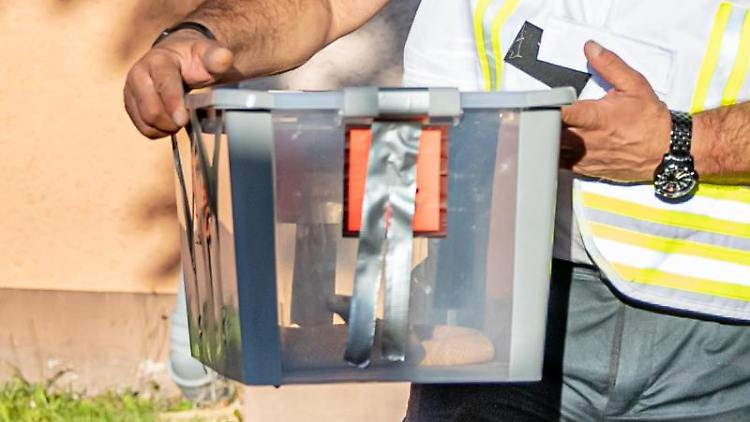 Reptilienexperte Roland Byner trägt die entwischte Monokelkobra in einem Behälter aus einem Hauseingang. Foto: Marcel Kusch/Archiv