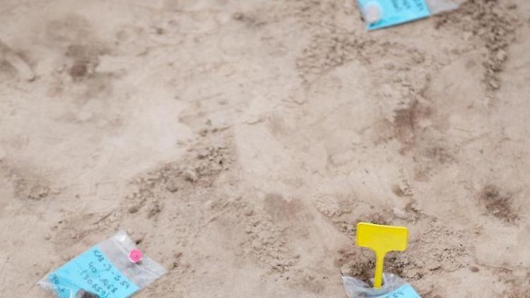 Archäologische Funde der Grabungssaison 2018 sind auf einem Grabungsfeld in Kalkriese markiert. Foto: Friso Gentsch/Archivbild