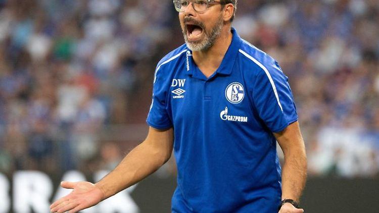 Schalkes Trainer David Wagner gibt Anweisungen. Foto:Federico Gambarini/Archivbild