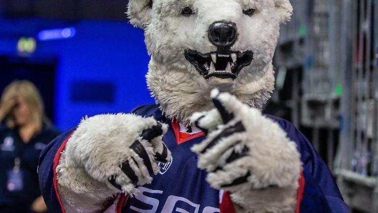 EEisbären Maskottchen Bully zeigt mit ausgestrecktem Finger. Foto:Andreas Gora