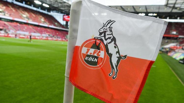 Auf der Eckfahne ist das Logo des 1. FC Köln zu sehen. Foto: Christophe Gateau/dpa