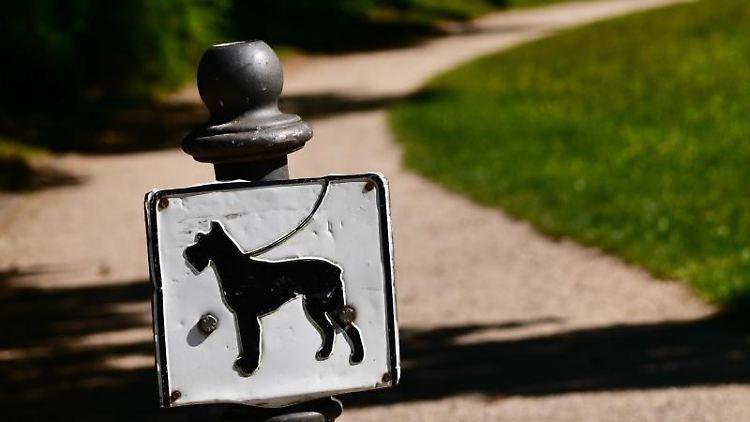 In einem Park steht ein Schild mit einem an der Leine geführten Hund. Foto: Nicolas Armer/dpa