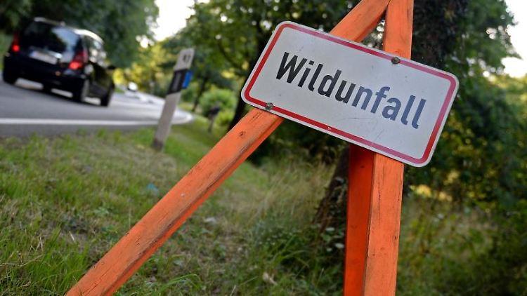 Ein Schild weist auf einen Wildunfall hin. Foto: Susann Prautsch/dpa
