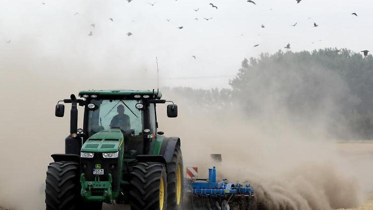 Ein Landwirt pflügt den trockenen Acker nach der Ernte durch. Foto: Peter Gercke/zb/dpa/Archivbild
