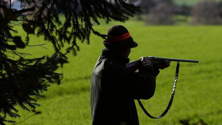 Ein Jäger steht während einer Treibjagd mit seinem Gewehr schussbereit am Waldrand. Foto: Felix Kästle/dpa/Archivbild