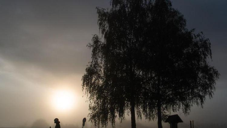 Die Sonne geht neben einem Baum im Nebel auf. Foto: Tom Weller/dpa/Archivbild