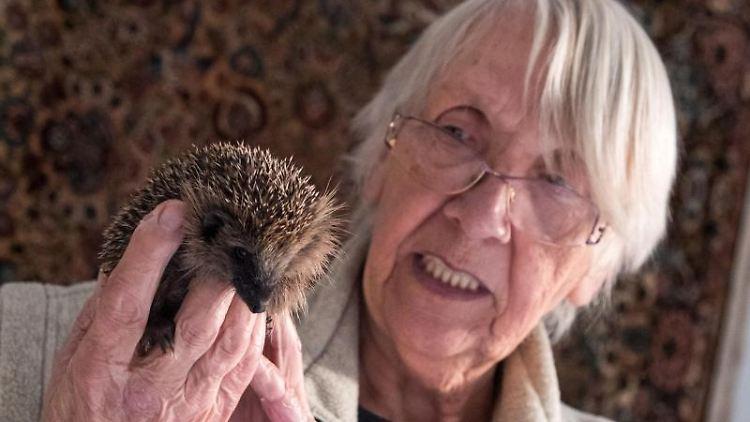 Die Rentnerin hält einen kleinen Igel. Foto: Daniel Bockwoldt/dpa