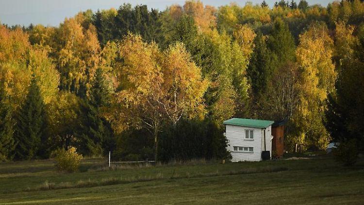 Ein Tiny House des Tiny House Village ist zwischen herbstlich verfärbten Bäumen zu sehen. Foto: Nicolas Armer/dpa