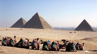 kamele_pyramiden.jpg