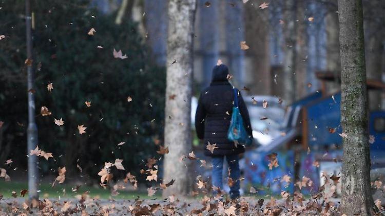 Windböen wirbeln Blätter in einer Parkanlage hoch. Foto: Arne Dedert/dpa/Archivbild