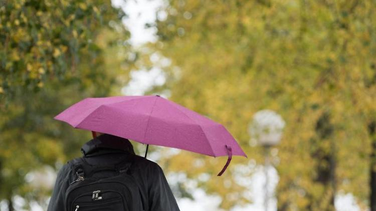 Ein Mann geht mit Regenschirmen unter herbstlich gefärbten Bäumen entlang. Foto: Sebastian Kahnert/zb/dpa