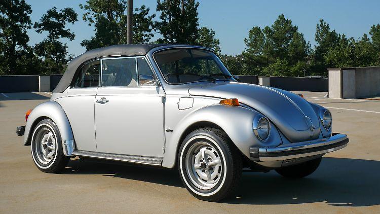 Beetle-29.jpg
