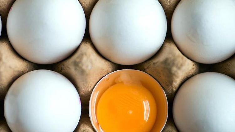 Ein aufgeschlagenes Ei liegt zwischen anderen weißen Eiern in einem Karton. Foto: Armin Weigel/dpa/Archivbild