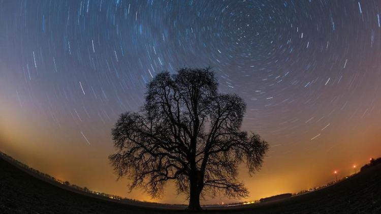 Sternenhimmel über einem Feld nahe Lietzen im Landkreis Märkisch-Oderland.jpg