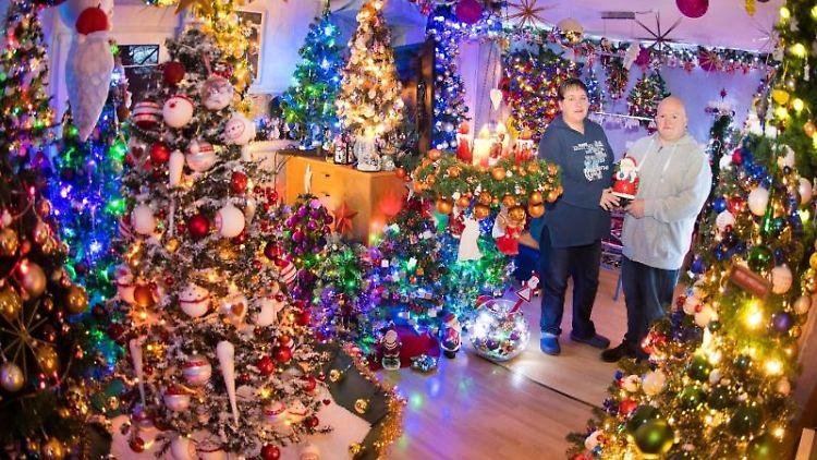Susanne und Thomas Jeromin stehen inmitten von Weihnachtsbäumen in ihrem Wohnzimmer. Foto: Julian Stratenschulte/dpa