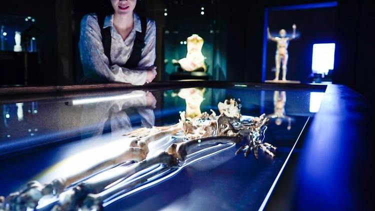 """Eine Frau besucht im Historischen Museum die Ausstellung """"Medicus - Die Macht des Wissens"""". Foto: Uwe Anspach/dpa"""