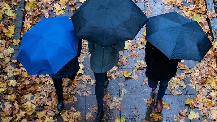 Drei Personen laufen mit Regenschirmen auf einem Gehweg. Foto: Tom Weller/dpa
