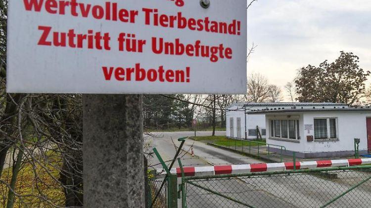 Ein Schild am Tor zum Unternehmen Schweinezucht Lindenberg GbR. Symbolbild. Foto: Patrick Pleul/dpa-Zentralbild/dpa