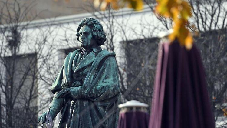Das Beethoven-Denkmal auf dem Münsterplatz erinnert an den Komponisten Ludwig van Beethoven. Foto: Henning Kaiser/dpa/Archivbild