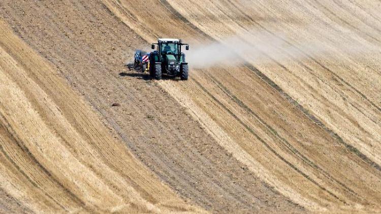 Ein Traktor mit Staubwolke auf einem abgeernteten Getreidefeld. Foto: Jens Büttner/zb/dpa/Symbolbild