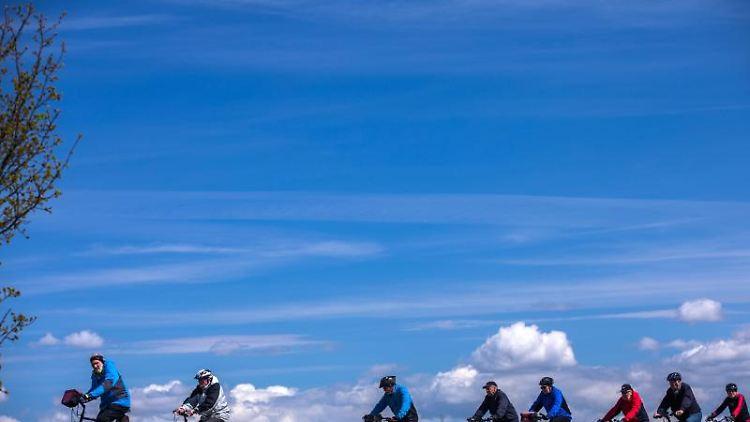 Eine Gruppe Radfahrer ist auf einem Fahrradweg auf der Insel Poel zu sehen. Foto: Jens Büttner/zb/dpa/Archivbild