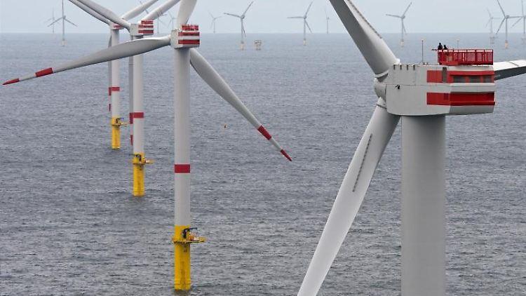 Ein Offshore-Windpark in der Nordsee. Foto: Ingo Wagner/dpa/Archivbild