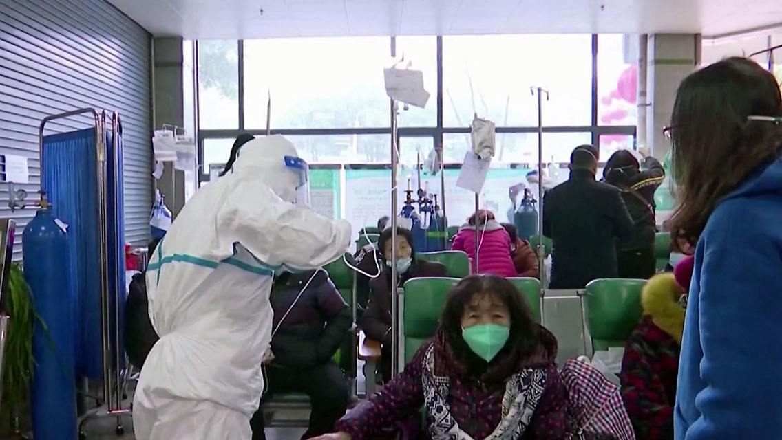 Coronavirus entstehung