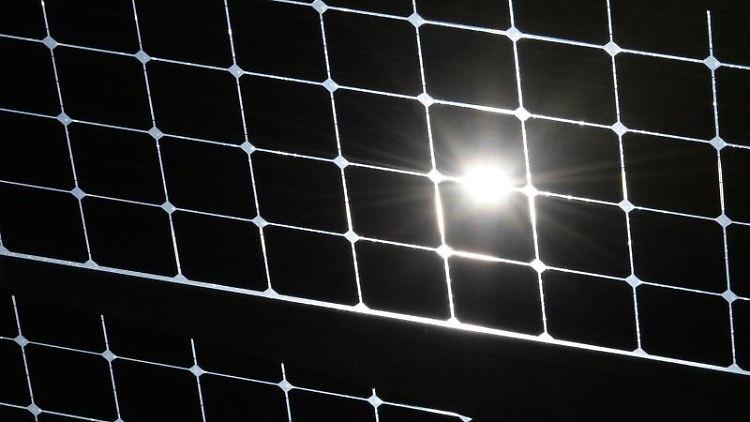 Die Sonne scheint durch die Solarzellen einer Solaranlage. Foto: Patrick Seeger/dpa/Archiv