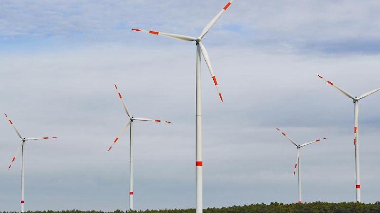 Windenergieanlagen stehen in einem Wald. Foto: Patrick Pleul/dpa-Zentralbild/ZB