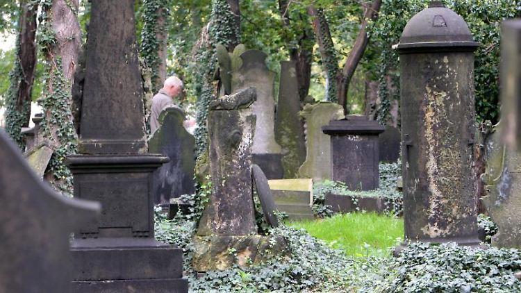 Ein Mann betrachtet in Dresden auf dem Eliasfriedhof ein Grab. Foto: Matthias Hiekel/dpa-Zentralbild/dpa/Archivbild