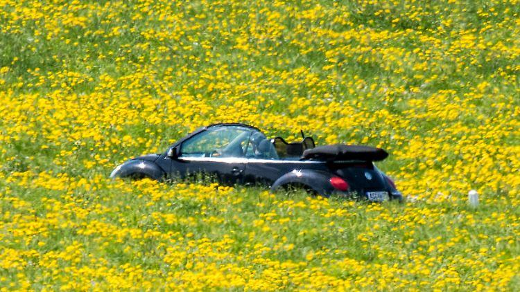 Autofahren Italien Corona