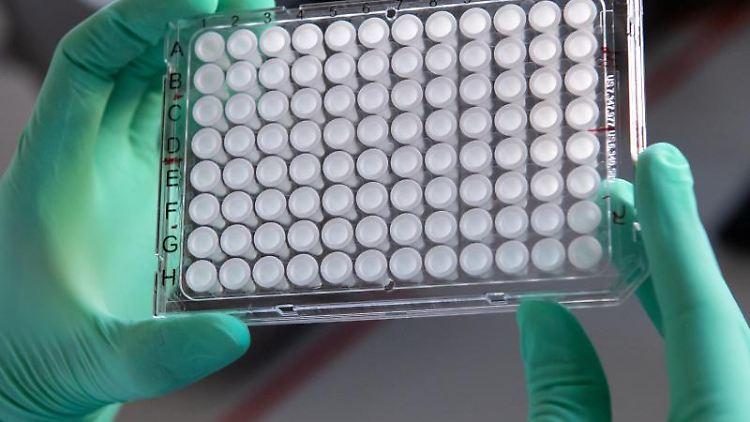 Eine Labor-Mitarbeiterin hält eine Multiwell-Platte für eine Polymerase-Kettenreaktion. Foto: Sven Hoppe/dpa/Illustration