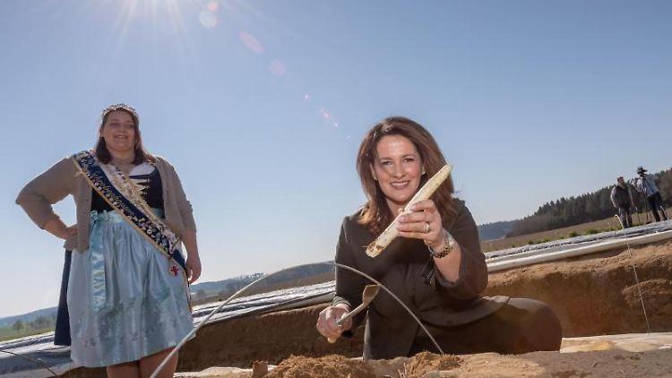 Landwirtschaftsministerin Michaela Kaniber (r, CSU) besucht einen Spargelbauern in Schrobenhausen. Foto: Peter Kneffel/dpa