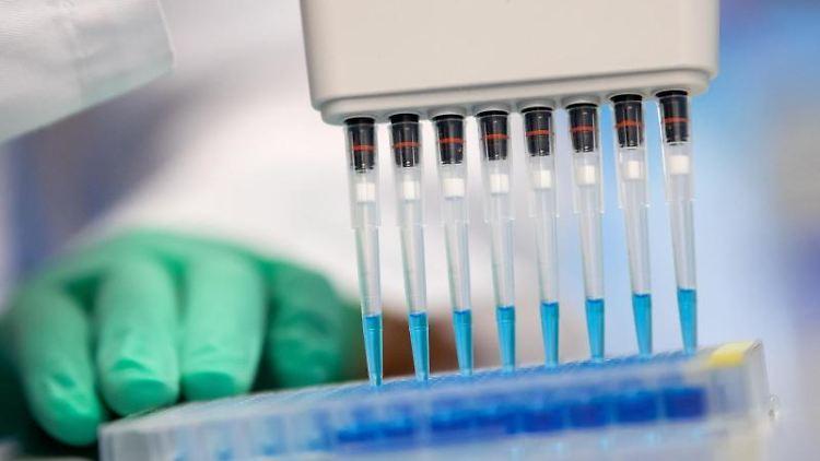 Corona-Tests in einem Labor des Instituts für Virologie der technischen Universität München. Foto: Sven Hoppe/dpa/Archivbild