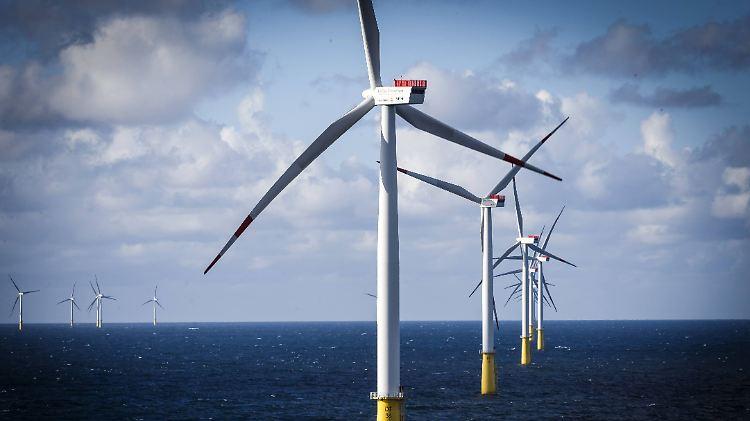 Etwas mehr als die Hälfte des eingespeisten Stroms stammt von erneuerbaren Energielieferanten.