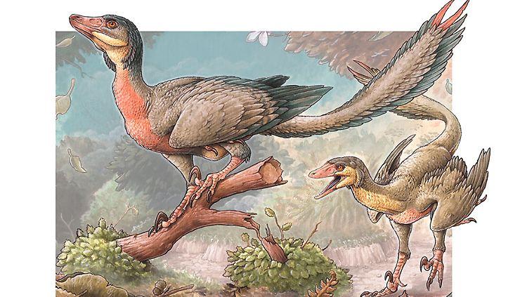Ilustracion-Overoraptors-1-Gabriel-Lio-web (1).jpg