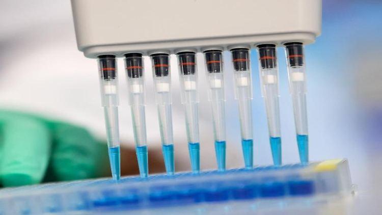 Eine Virologin untersucht Proben auf das Coronavirus. Foto: Sven Hoppe/dpa/Symbolbild